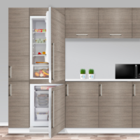 Build-in Fridge Freezer